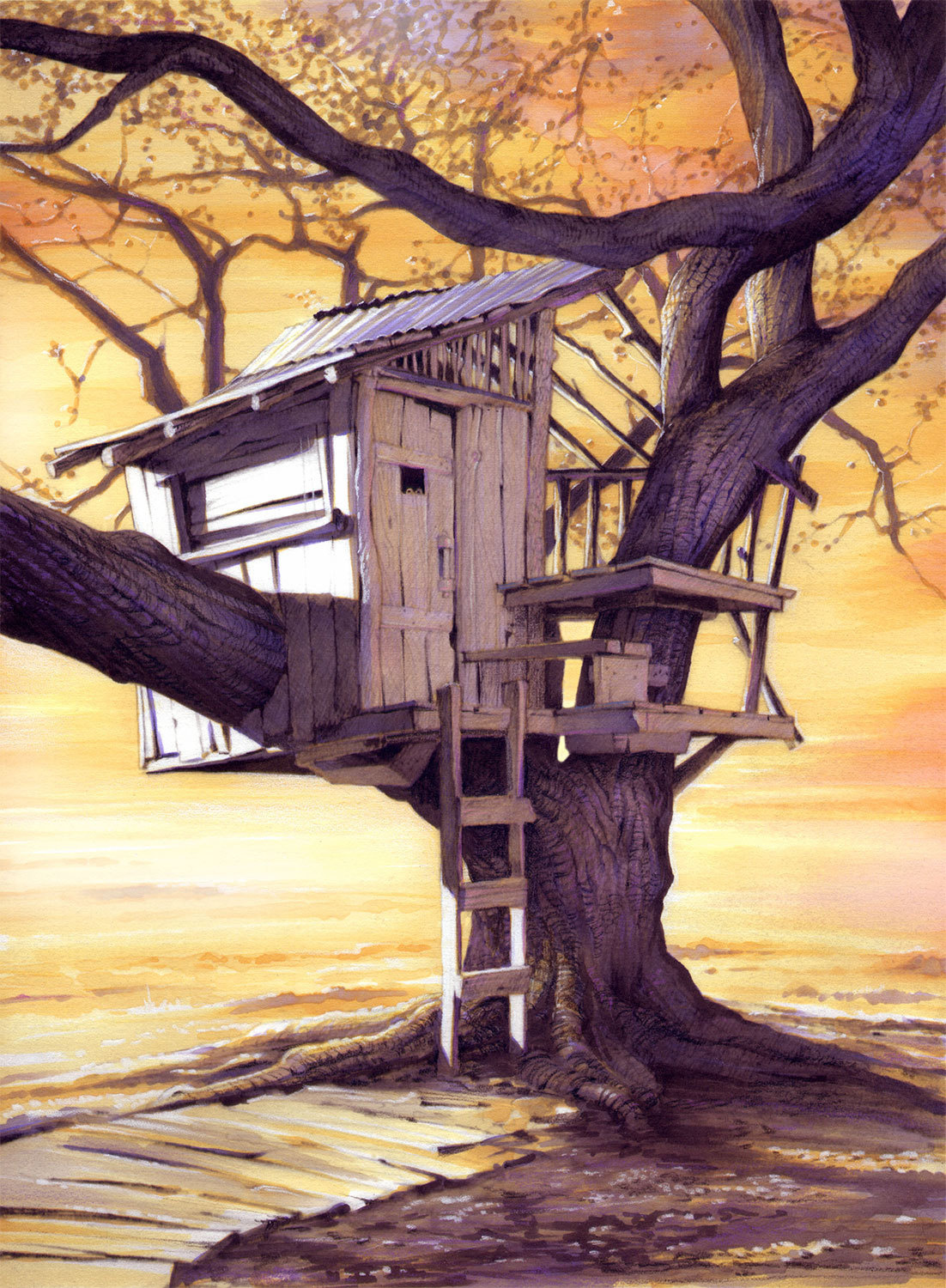 Tree House Dawn